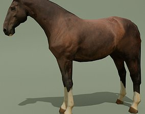 3D asset LowPoly Horse C Liver Chestnut