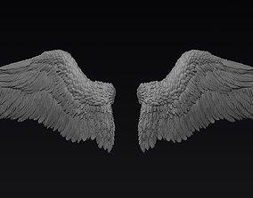 Wings Zbrush Sculpt human 3D