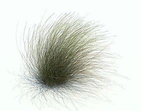 3D model tree Long Grass