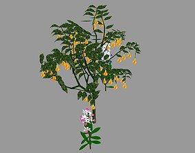 3D model low-poly tree flower