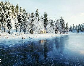 Cover 72H Cabin - SNOW Scene 3D model