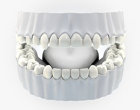Teeth tongue without texture 3d model