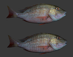3D printable model Fishs
