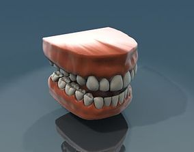 3D Teeth Anatomy