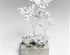 Tree models for the architecture model 3D