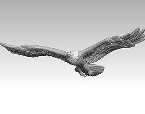 Bald eagle-3D print model