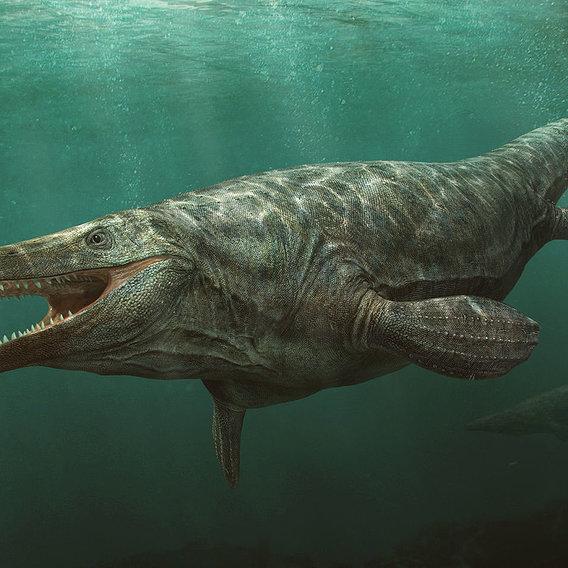 Tylosaurus and Thalassomedon