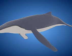 Rigged low poly Whale 3D model