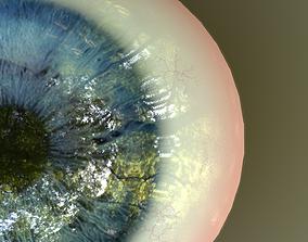 3D model Eye Anatomy
