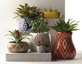Leta Pots with Plants 3D
