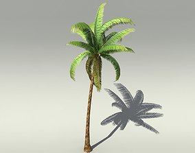 date 3D model realtime Palm Tree