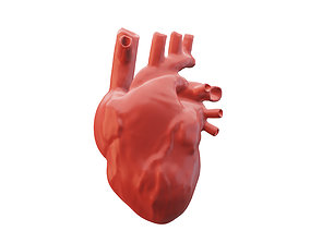 3D heartbeat Human heart