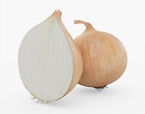3D model Onion Vegetable