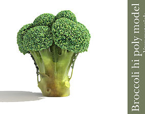Broccoli plant 3D