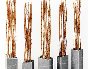 Bamboo vase slice thin branch decor n3 3D model