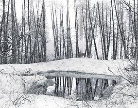 3D asset Winter Lake