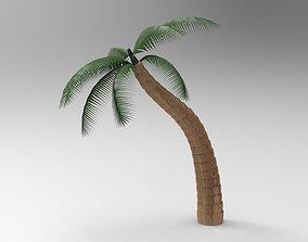 Nurbs Palm Tree 3D model