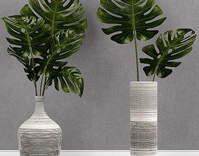 Monstera plant in vase 3D model