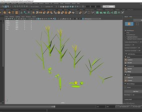 realtime 3d model of plants and fruits
