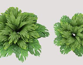 3D bush leaves