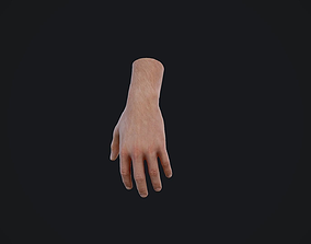 Realistic Male Hand Arm 3D model