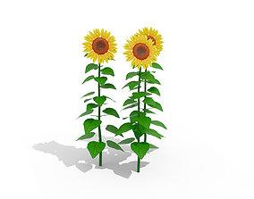 VR / AR ready 3D Stylized Sunflower