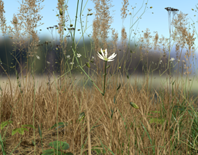 Grass Leaf Starwort Meadow Patch 3D