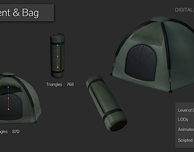 Survival Tent 3D asset
