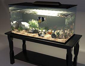 3D model Aquarium fish-tank