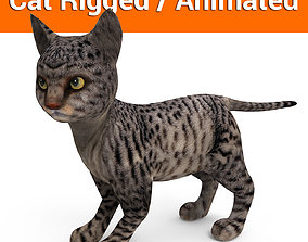 animated Black 3d Cat rigged and animated