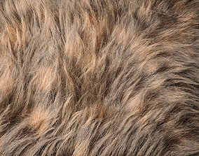 3D Fur Ornatrix Redshift