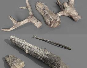 3D model realtime DriftWoods