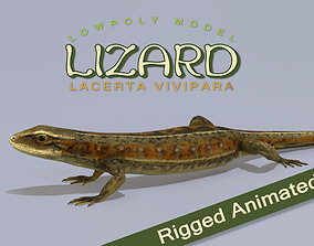 Lizard Lacerta Vivipara 3D model