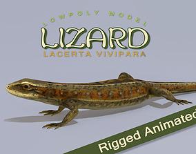 3D asset animated Lizard Lacerta Vivipara