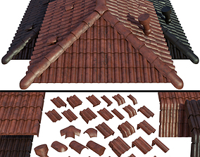 Roof and Ceramic tiles 3D model
