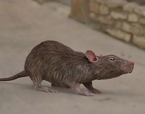 rat rigged fur 3D