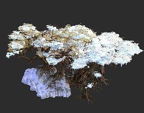 Nuwa-Snow Populus 12 3D
