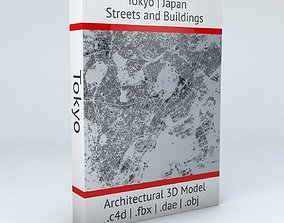 Tokyo Streets and Buildings 3D