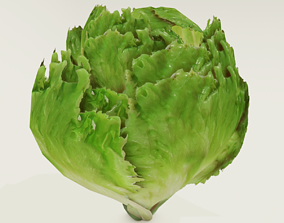3D asset Low poly lettuce