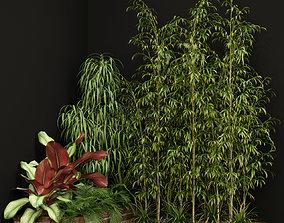 3D Plants collection 201