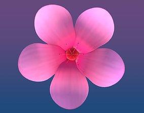 3D asset Cherry Blossom - Sakura