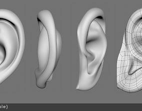 3D model Ear realistic