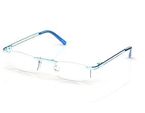 Eyeglasses for Men and Women shade 3D print model