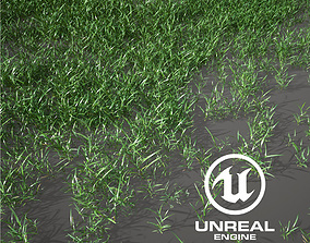 Realistic Grass 13 - UE4 Asset and FBX Files 3D model