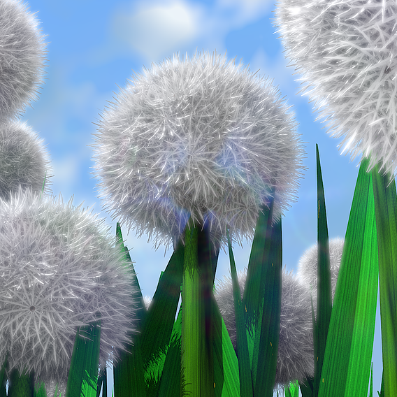 Dandelions - a staple