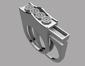 compartment Hidden Ring 3D printable model