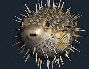 3DRT - Sealife - Puffer fish animated