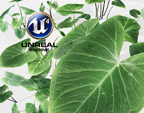 3D model Realistic Plant 01 - UE4 Asset and FBX Files