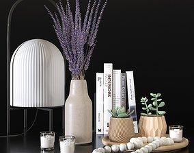 Decorative set with lavander and succulents 3D