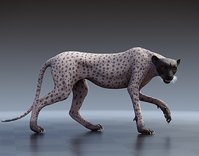 3D Cheetah - body with RIG including textures and shading